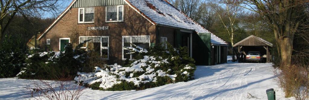 winter plat C