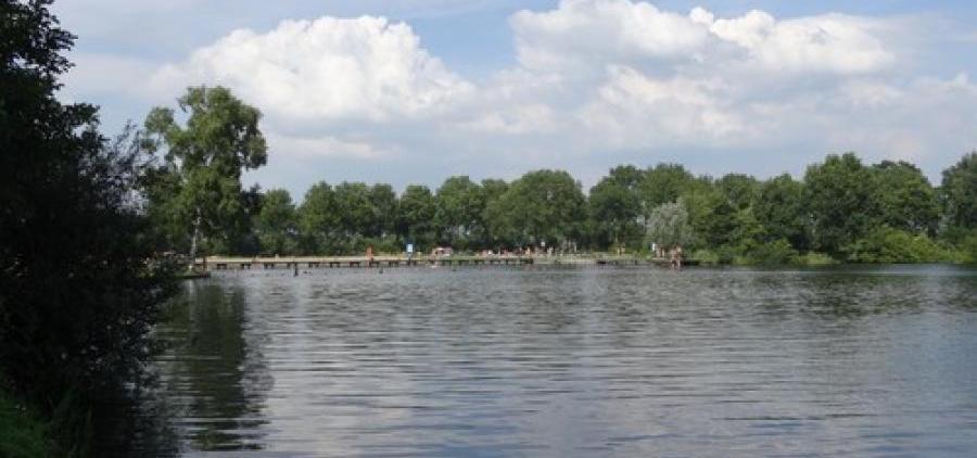 zwemmeertje bij Nijeveen